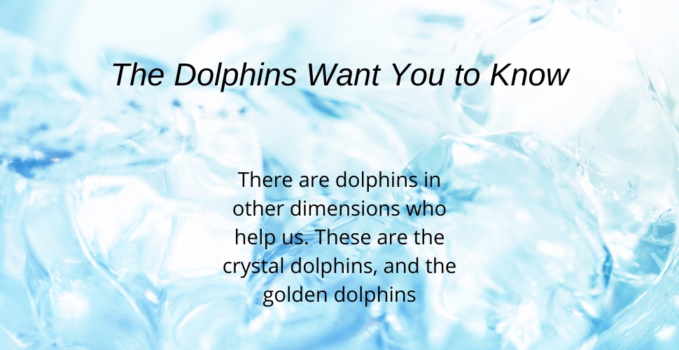 Blog Crystal and Golden Dolphins message