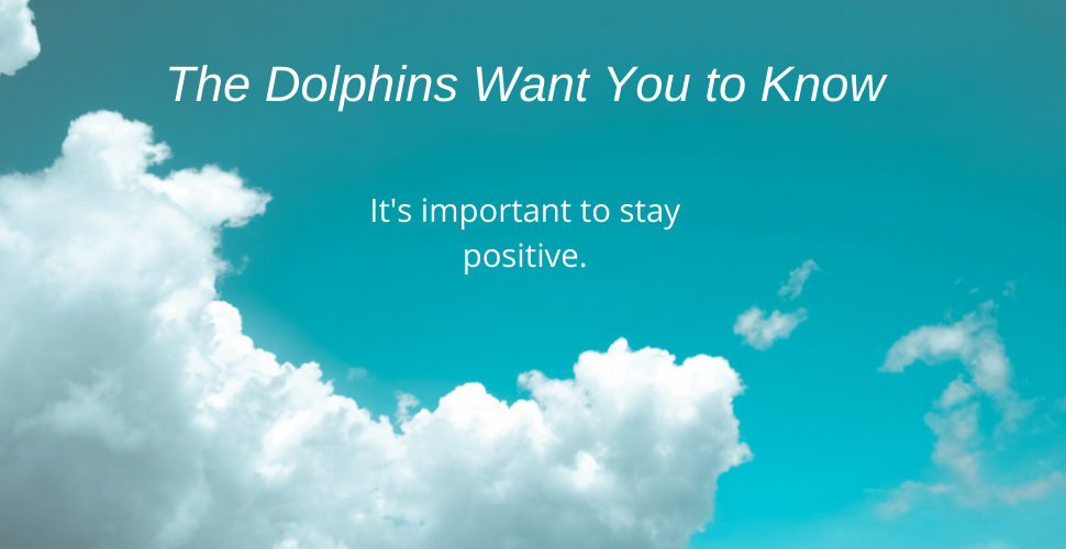 Blog Stay Positive dolphin message