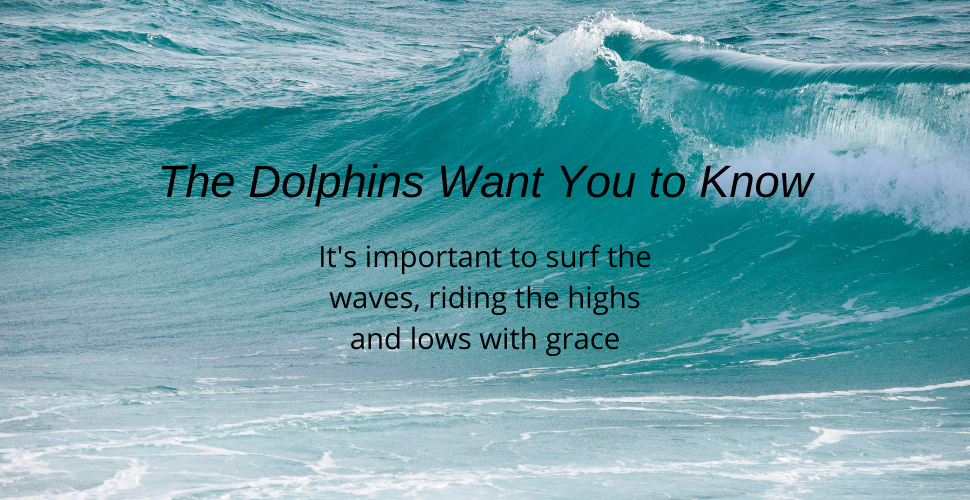 Blog Surf the waves dolphin message