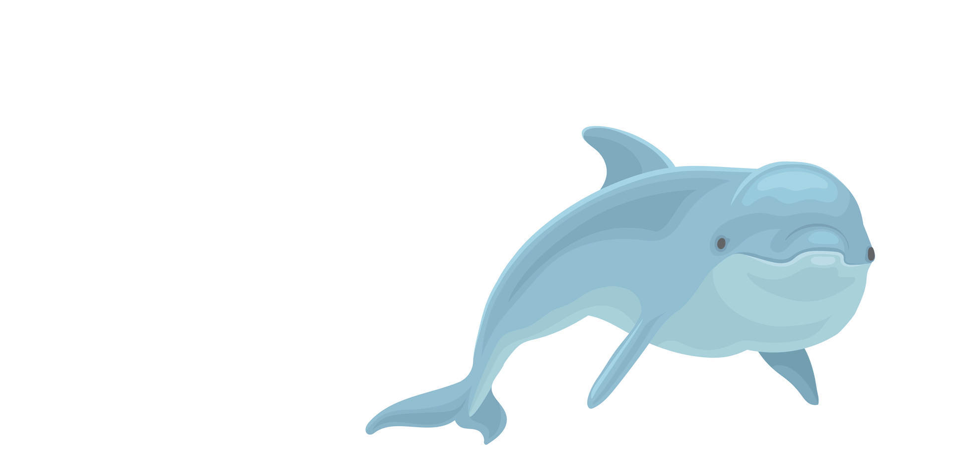 Dolphin Waters Healing Animal Communication-dolphin